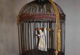 The Little Frock in The Cage