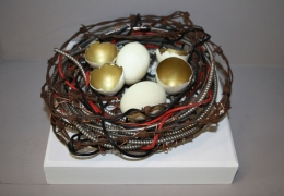 The Golden Eggs in The Wire Nest